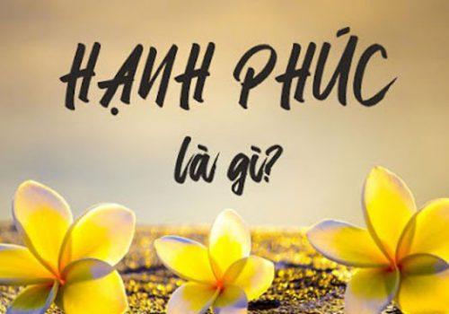 hanh-phuc-la-gi-700